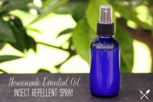 Essential Oil Insect Repellent Spray