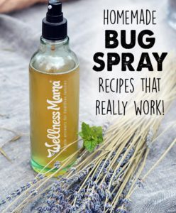 Home Made Bug Spray Recipe